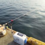 エビ撒き釣りハネを釣りの最初の1匹を釣るための考え方