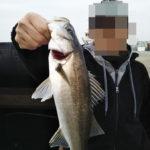 3月のエビ撒き釣りは夕まづめを狙え!?2019年初ハネ地蔵浜での釣行