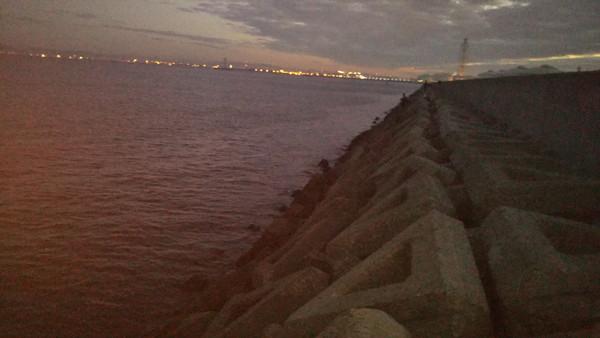 助松埠頭沖向きテトラ2