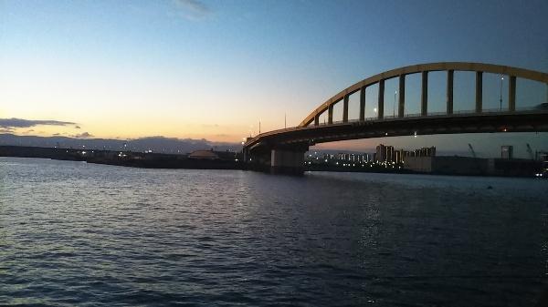 泉大津、花市場公園の釣り場紹介と釣行記
